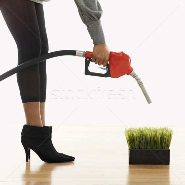 экологически чистые топлива женщину бензина насос Сток-фото © iofoto