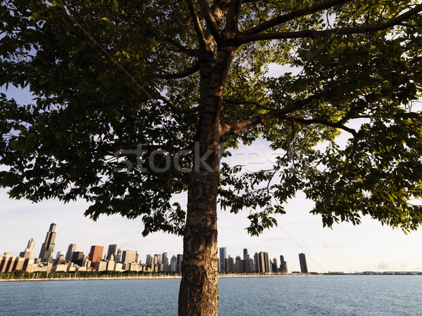 Lake Michigan, Chicago. Stock photo © iofoto