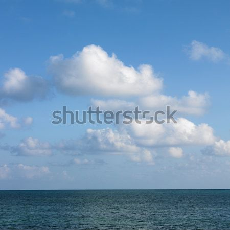 Horizon line. Stock photo © iofoto