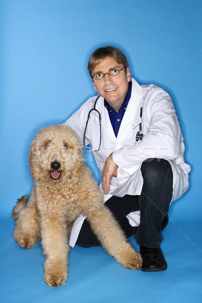 Masculino veterinário cão caucasiano médico Foto stock © iofoto