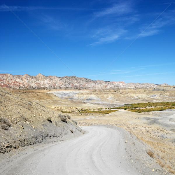 Desert road. Stock photo © iofoto