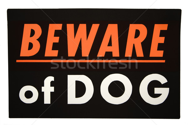 Beware of dog. Stock photo © iofoto