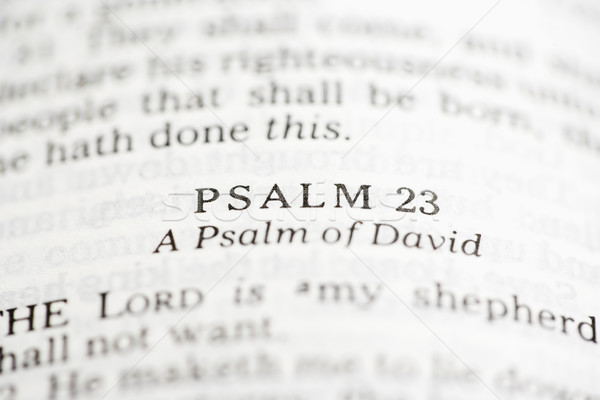 Psalm of David. Stock photo © iofoto