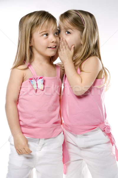 Girl children twin sisters. Stock photo © iofoto