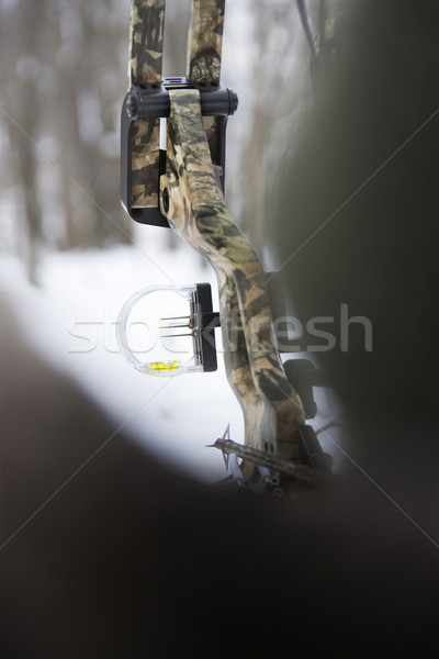 Camouflage bow and arrow. Stock photo © iofoto