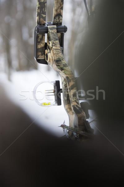Kamuflaż łuk arrow zamazany pierwszy plan drzewo Zdjęcia stock © iofoto