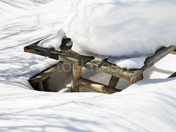Picknicktafel sneeuw gedekt tabel witte koud Stockfoto © iofoto