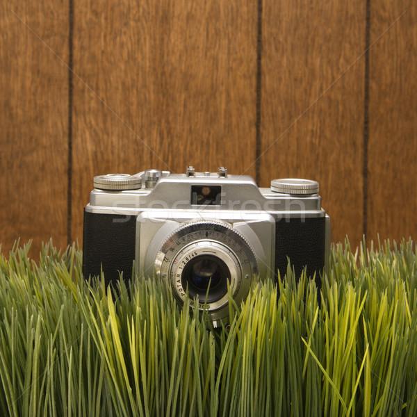 Vintage camera on grass Stock photo © iofoto