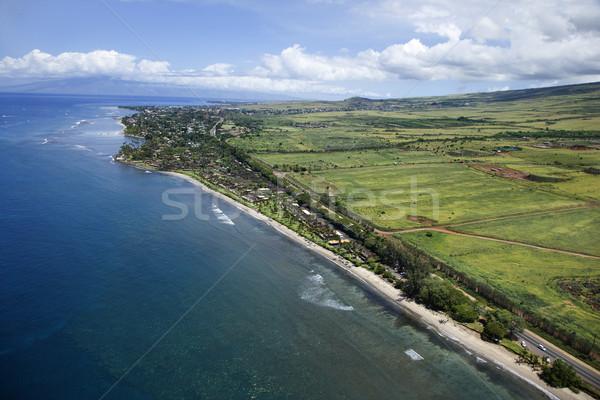 Maui coastline. Stock photo © iofoto