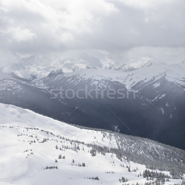 Moutain peaks. Stock photo © iofoto