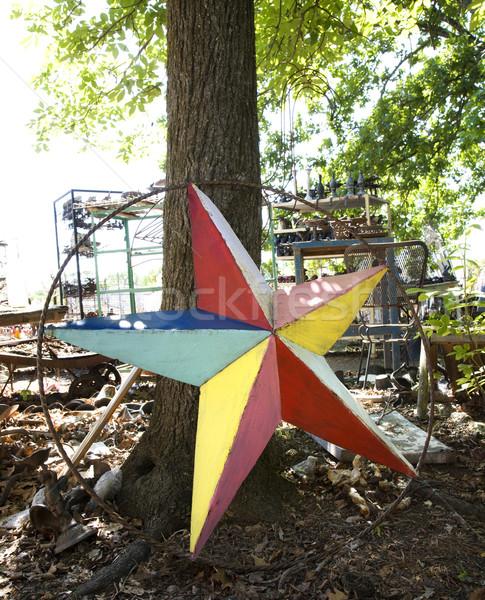 Stok fotoğraf: Renkli · Metal · star · ağaç · boyalı