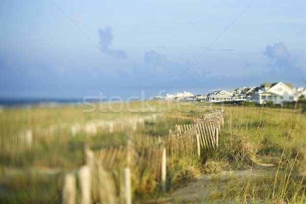 Beachfront houses overlooking ocean. Stock photo © iofoto