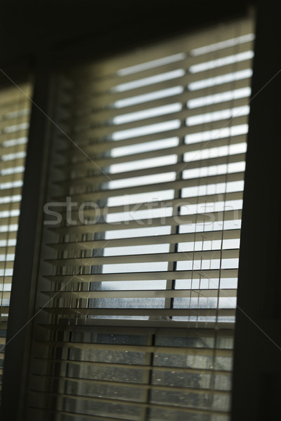 Window with open blinds. Stock photo © iofoto