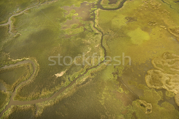 Aerial view of tributary. Stock photo © iofoto