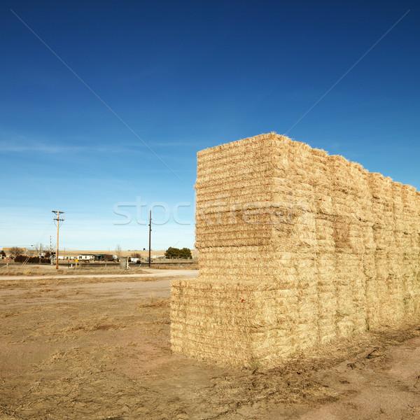 Széna vidéki táj tájkép farm mezőgazdaság tér Stock fotó © iofoto