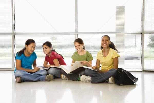 Girls doing schoolwork. Stock photo © iofoto