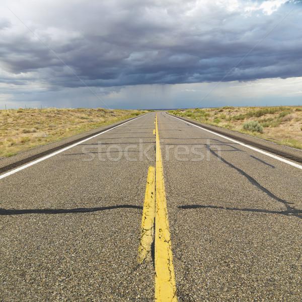 Desert highway. Stock photo © iofoto