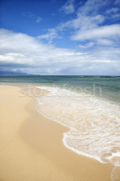 Tropical beach in Maui, Hawaii. Stock photo © iofoto