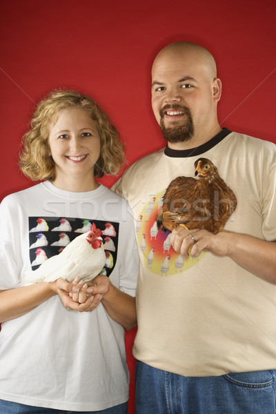 Smiling couple holding chickens. Stock photo © iofoto