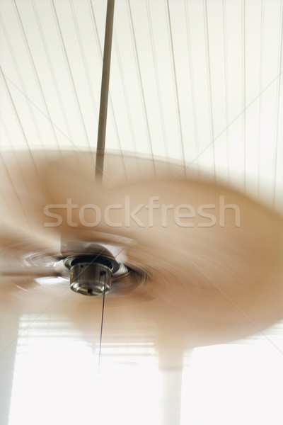 Ceiling fan with motion blur. Stock photo © iofoto