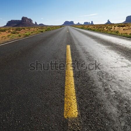 Stock fotó: Festői · sivatag · út · nyitva · autópálya · tájkép