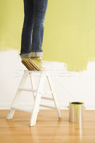 Woman on ladder painting. Stock photo © iofoto