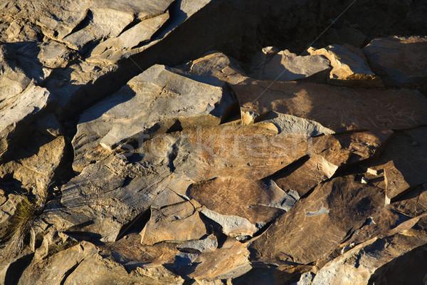 Rocky ground at Haleakala. Stock photo © iofoto