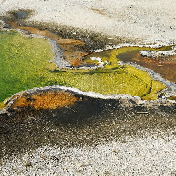 Geiser kleurrijk mineraal park Wyoming voorjaar Stockfoto © iofoto