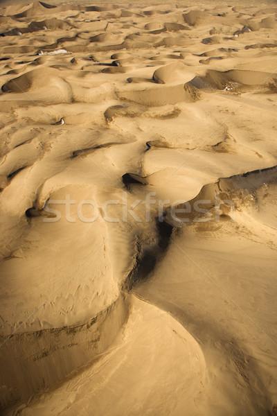 Great Sand Dunes NP, Colorado. Stock photo © iofoto