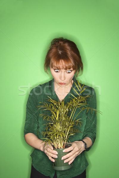 Foto stock: Mulher · planta · caucasiano · verde · olhando