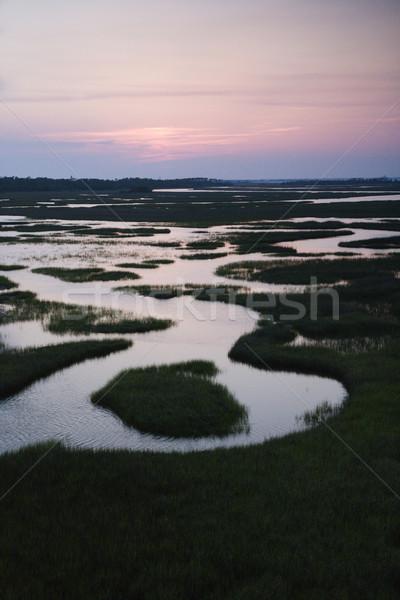 Aerial of wetland. Stock photo © iofoto