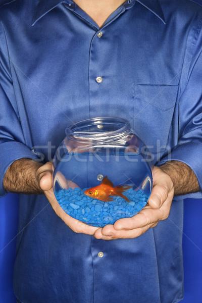 человека Goldfish чаши мужчины кавказский Сток-фото © iofoto