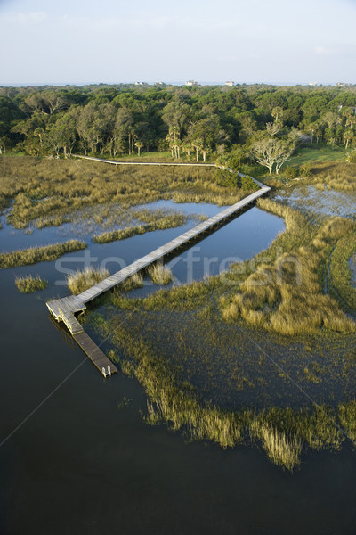 Dock over marsh. Stock photo © iofoto