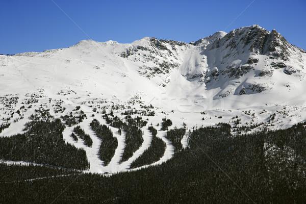 Ski resort trails on mountain. Stock photo © iofoto