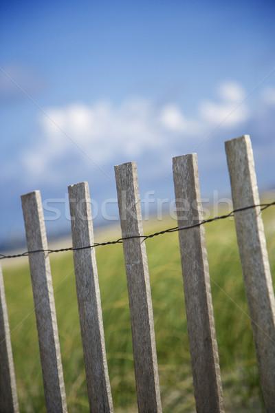 Verweerde houten hek duin strand kleur Stockfoto © iofoto