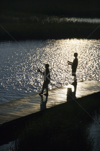 Fiúk halászat dokk madarak szem kilátás Stock fotó © iofoto