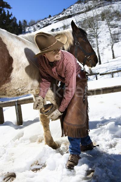 Zdjęcia stock: Człowiek · czyszczenia · konia · cowboy · hat · na · zewnątrz