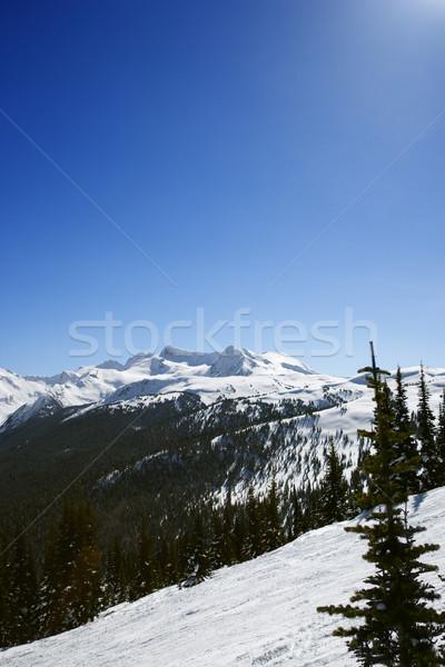 Scenic ski mountain landscape. Stock photo © iofoto