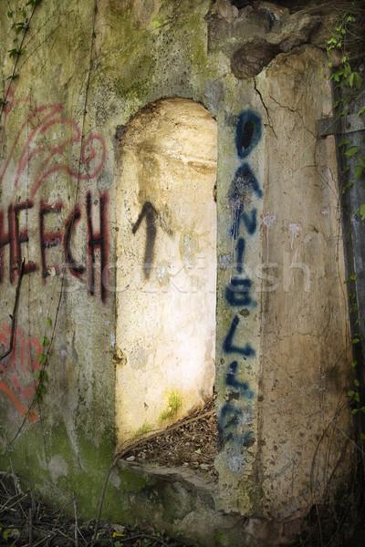 Deuropening spray geschilderd graffiti verlaten gebouw Stockfoto © iofoto