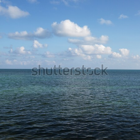 Ocean and sky. Stock photo © iofoto