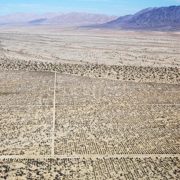 Foto d'archivio: Deserto · montagna · remote · California · griglia