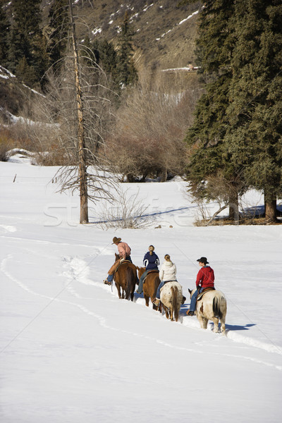 Group horseback riding in snow. Stock photo © iofoto