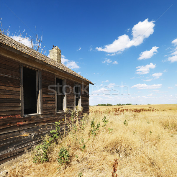 Old building in field. Stock photo © iofoto