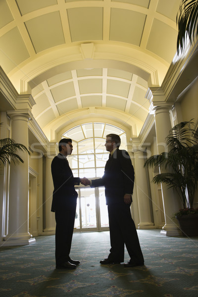 Two businessmen shaking hands. Stock photo © iofoto