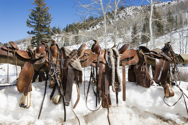 Stock photo: Western Saddles on a Rail