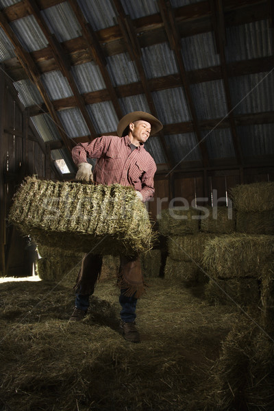 Man in Barn Moving Bales of Hay Stock photo © iofoto