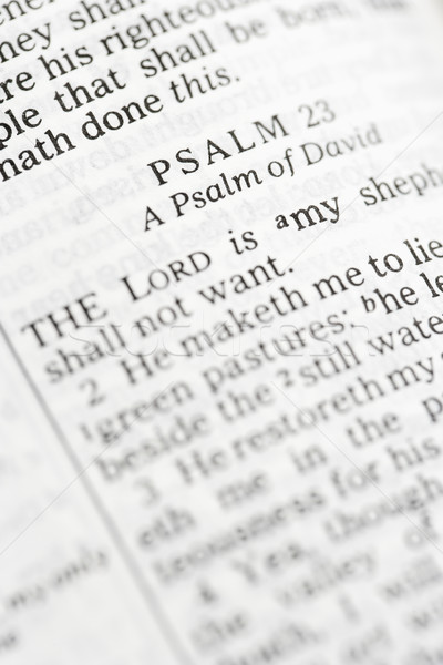 Holy Bible Psalm. Stock photo © iofoto