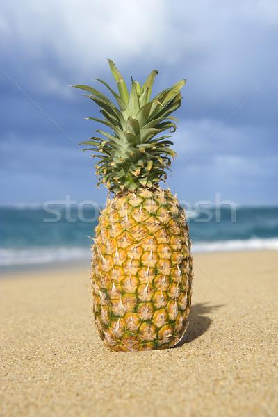 Ananas tropikal plaj bütün gıda manzara meyve Stok fotoğraf © iofoto