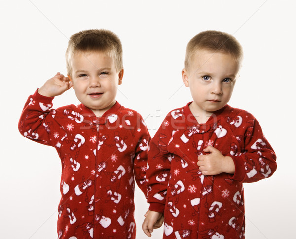Twin boy brothers holding hands. Stock photo © iofoto
