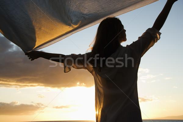 Nő sziluett vonzó kaukázusi magasra tart szövet Stock fotó © iofoto